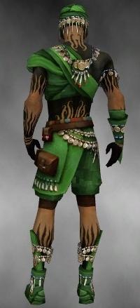 File:Ritualist Luxon Armor M dyed back.jpg