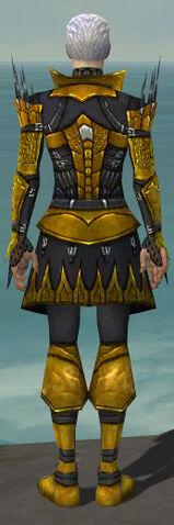 File:Necromancer Cabal Armor M dyed back.jpg