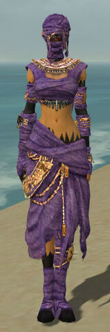 File:Ritualist Ancient Armor F dyed front.jpg