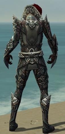 File:Necromancer Monument Armor M gray back.jpg