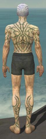 File:Necromancer Scar Pattern Armor M gray chest feet back.jpg