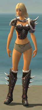 Warrior Norn Armor F gray chest feet front