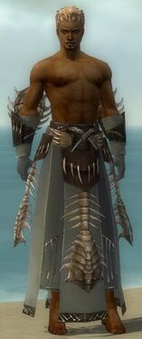Dervish Primeval Armor M gray arms legs front