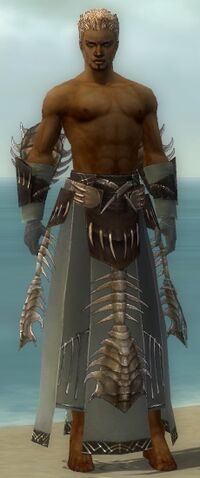 File:Dervish Primeval Armor M gray arms legs front.jpg