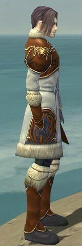 File:Elementalist Norn Armor M dyed side.jpg
