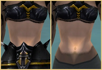 Necromancer Obsidian armor female tunic irregularity