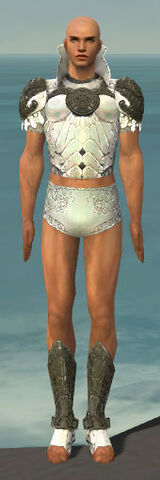 File:Paragon Elonian Armor M gray chest feet front.jpg