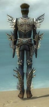 Assassin Asuran Armor M gray back