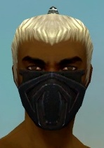 File:Assassin Obsidian Armor M dyed head front.jpg