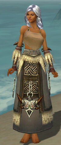 File:Dervish Norn Armor F gray arms legs front.jpg