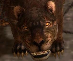 File:Melandru's Stalker (Face).jpg