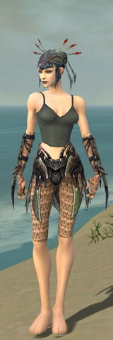 File:Necromancer Elite Cabal Armor F gray arms legs front.jpg