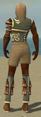 Ranger Shing Jea Armor M gray chest feet back