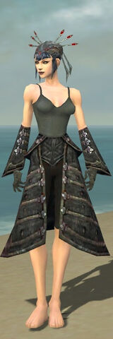 File:Necromancer Elite Cultist Armor F gray arms legs front.jpg
