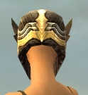 File:Warrior Monument Armor F dyed head back.jpg