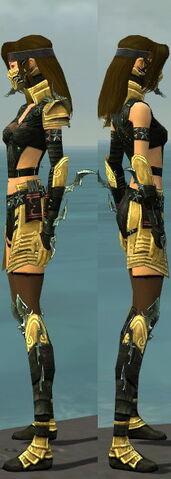 File:Assassin Elite Luxon Armor F dyed side.jpg