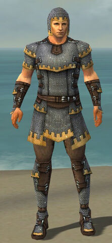 File:Warrior Tyrian Armor M dyed front.jpg