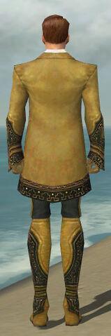 File:Mesmer Krytan Armor M dyed back.jpg