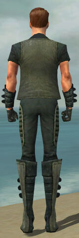 File:Mesmer Rogue Armor M gray back.jpg