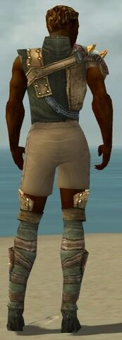 File:Ranger Tyrian Armor M gray chest feet back.jpg