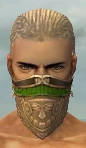 File:Ranger Asuran Armor M dyed head front.jpg