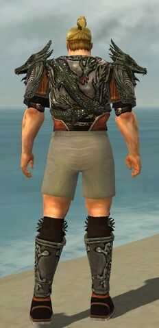 File:Warrior Elite Canthan Armor M gray chest feet back.jpg