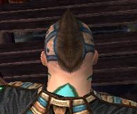 File:Monk Elite Luxon Armor M gray head back.jpg
