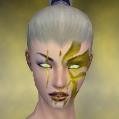 File:Necromancer Elite Canthan Armor F dyed head front.jpg