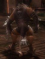 Pyre Fierceshot Armor Deldrimor Back
