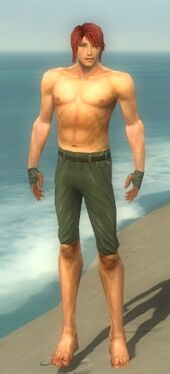 Mesmer Luxon Armor M gray arms legs front