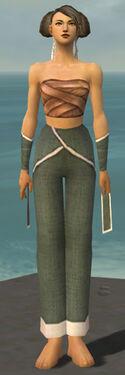 Monk Ascalon Armor F gray arms legs front