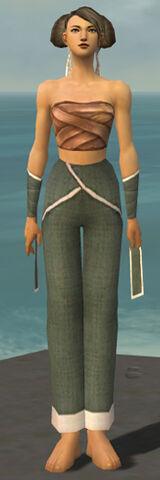 File:Monk Ascalon Armor F gray arms legs front.jpg