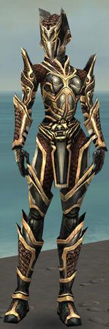 File:Warrior Elite Kurzick Armor F dyed front.jpg