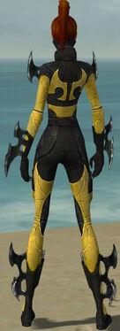 Assassin Kurzick Armor F dyed back