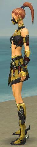 File:Assassin Elite Canthan Armor F dyed side.jpg