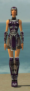 Warrior Istani Armor F dyed front