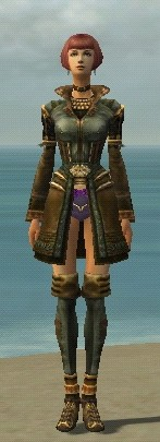 File:Mesmer Ancient Armor F gray chest feet front.jpg