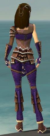 File:Ranger Shing Jea Armor F dyed back.jpg