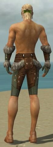 File:Ranger Fur-Lined Armor M gray arms legs back.jpg