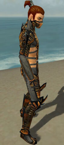 File:Assassin Elite Exotic Armor M gray side.jpg