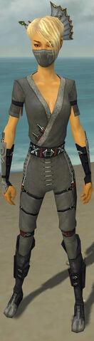 File:Assassin Shing Jea Armor F gray front.jpg