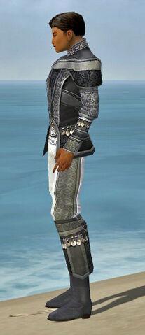 File:Elementalist Luxon Armor M gray side.jpg