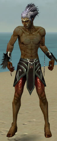 File:Necromancer Sunspear Armor M gray arms legs front.jpg
