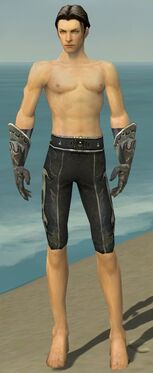 Elementalist Elite Flameforged Armor M gray arms legs front