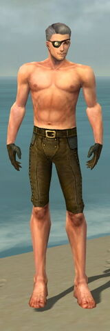 File:Mesmer Monument Armor M gray arms legs front.jpg