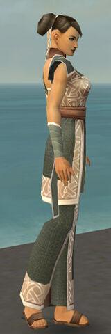 File:Monk Tyrian Armor F gray side.jpg