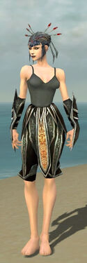 Necromancer Elite Sunspear Armor F gray arms legs front