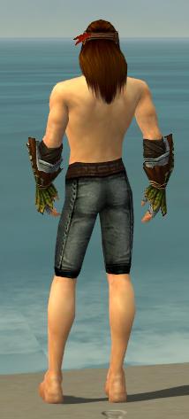 File:Ranger Druid Armor M gray arms legs back.jpg