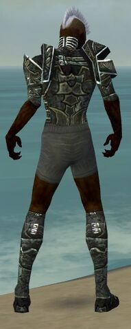 File:Necromancer Fanatic Armor M gray chest feet back.jpg