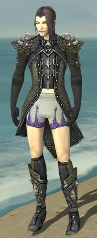 File:Elementalist Elite Stoneforged Armor M gray chest feet front.jpg
